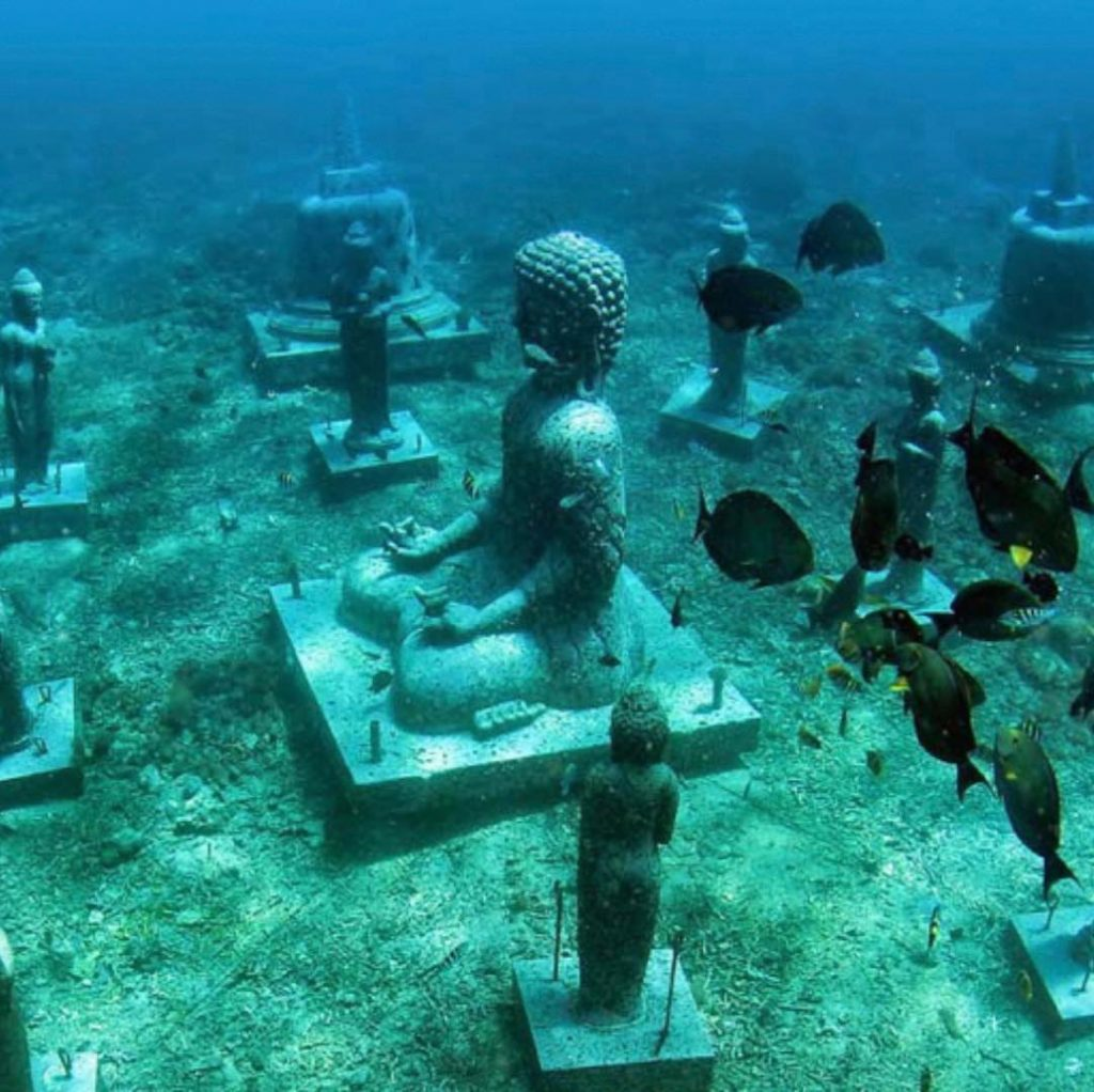 Best Dive Sites in Bali for Artificial Reefs