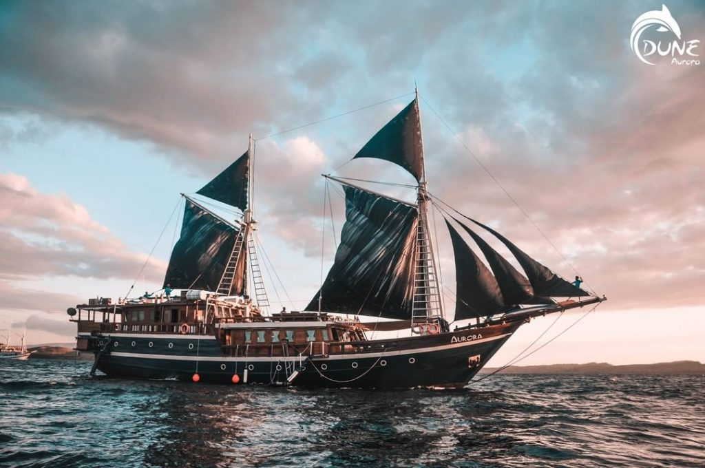 First Time in Liveaboard Scuba Diving Vacations for Beginners
