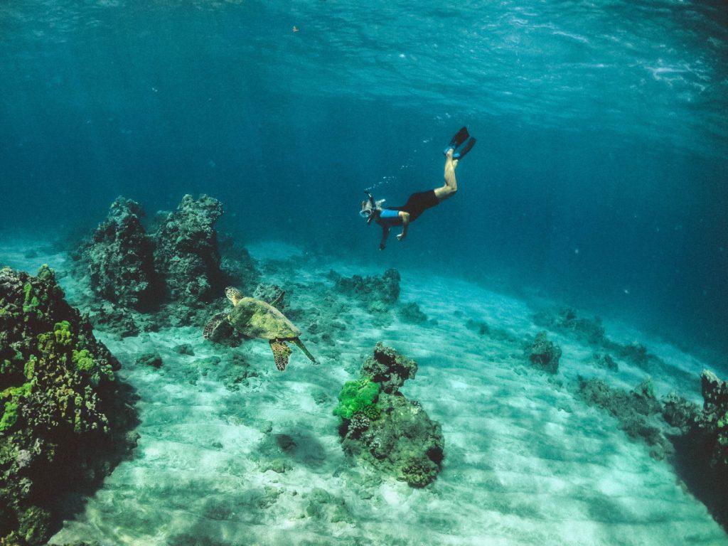 Komodo Liveaboard For Snorkeling Lovers